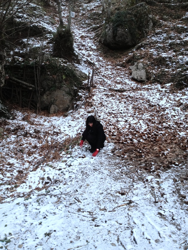 I made my way back by the woods instead of using the coast line road.  The first traces of snow were there and it was extremely cold but as a sunny Floridian I had to touch the snow, I just had to