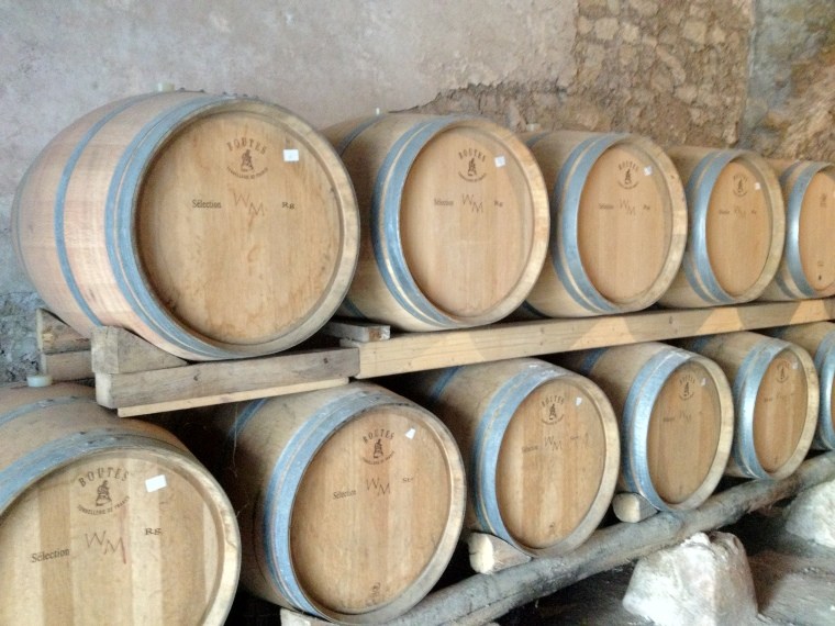 Piedirosso is aged for 18 months on French oak barrels at La Sibilla